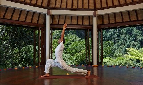 06b Yoga Pose 2_IMG 500 x 300