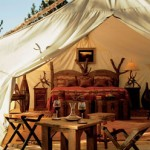 Luxury Glamping tent at Paws Up