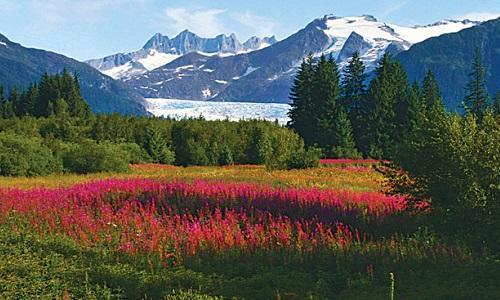 Alaska NL5