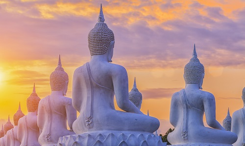 Many Buddha statue on sunset landscape twilight