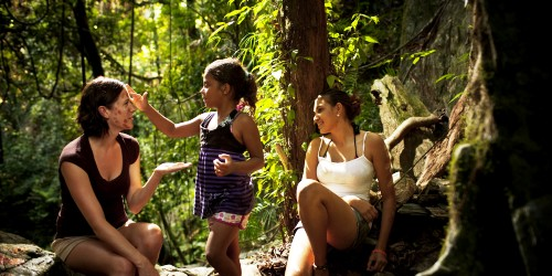 Australia's Daintree National Park: The world's oldest living tropical rainforest