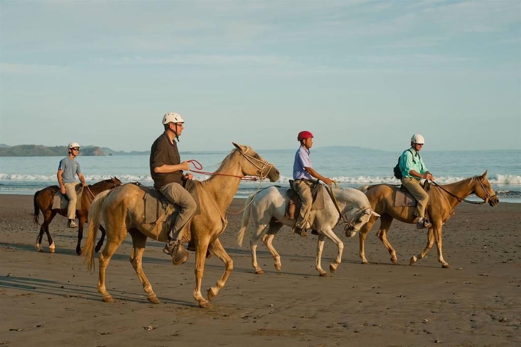 horseback-riding-2.jpg.1024x0